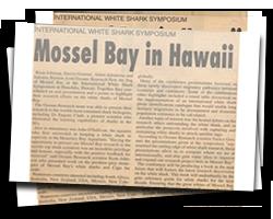 Mossel Bay in Hawaii