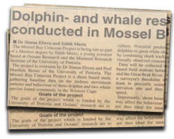 Dolphin- and whale research conducted in Mossel Bay