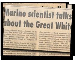Marine scientist talks about Great White