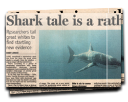 Shark tale, a rather shallow story