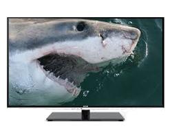 Ultimate Shark