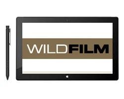 Wild Films : Sharkville