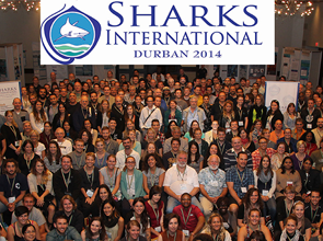 Sharks International- Durban 2-6 June 2014